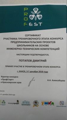 2018.12.3-7_Потапов Дмитрий_сертификат участника ПрофСтарт.jpg